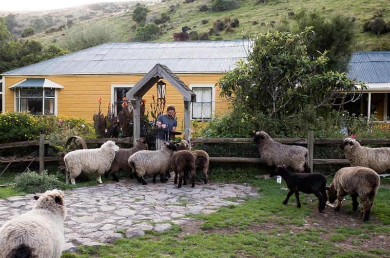 01-23-18_New-Zealand_0245